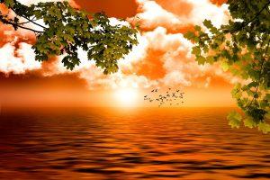 Spiritualité et développement personnel -Ai-je la main sur mon destin
